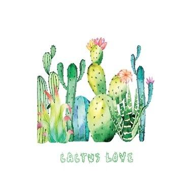 Deffter Cactus Cactus Lov Renkli